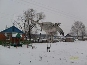 Журавль из Краснинского района Липецкой области